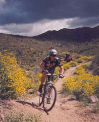 Hawes Trails