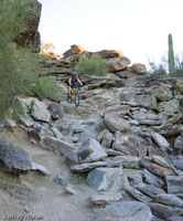 Mormon - National Trails, South Mountain Park